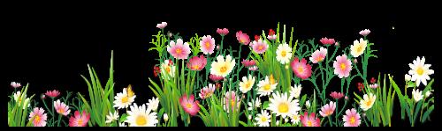 Flower png jpg grass ground with pink flowers png clipart spring flower png jpg grass ground with pink flowers png clipart spring borders pinterest clip art 2419 mightylinksfo